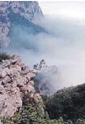 Монастырь в почасовую Аренду (new)