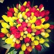 Голландские тюльпаны оптом в Новосибирске к 8 марта