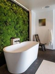 Озеленение интерьера,  декор и дизайн
