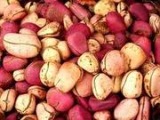 Орех Колы (свежий). Продукция из Западной Африки