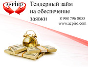 Тендерный займ на обеспечение заявки для Новосибирска
